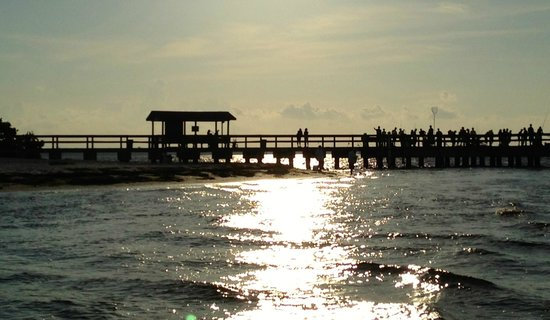 View of the small fishing pier at sunset picture of for Sanibel fishing pier