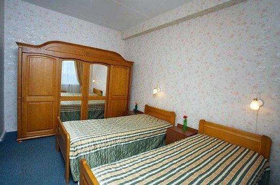 Hotel Svetlana Health Resort: Jsuite Twin
