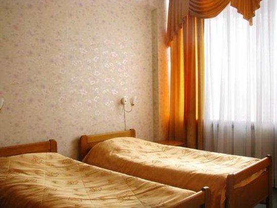Hotel Svetlana Health Resort: Economy room