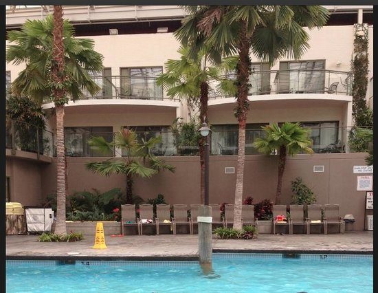 Best Western Plus Lamplighter Inn & Conference Centre: ATRIUM - VIew of the Pool