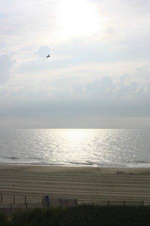 أتلانتك أوشنفرنت إن: View of ocean from the hotel.