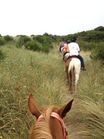 Green Acres Equestrian Center: Trail ride