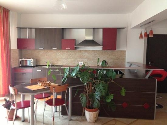 Vila Lupilor : kitchen