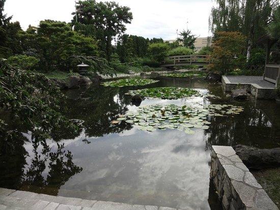 Kasugai Japanese Garden: Angle one
