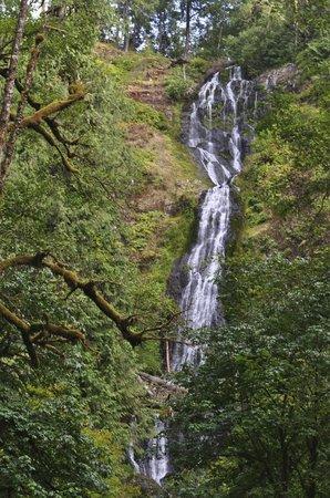 Munson Creek Falls: falls at low flow