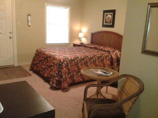 Laguna Park, TX : Guest Room