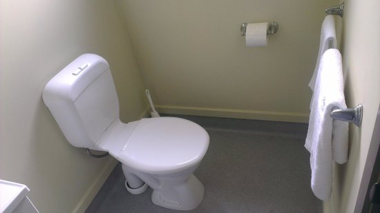 Southern Cross Serviced Apartments : Toilet