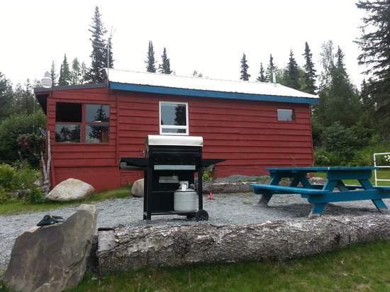 Red Cabin B&B: Barbecue.