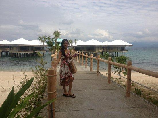 Dos Palmas Island Resort & Spa: Arrival