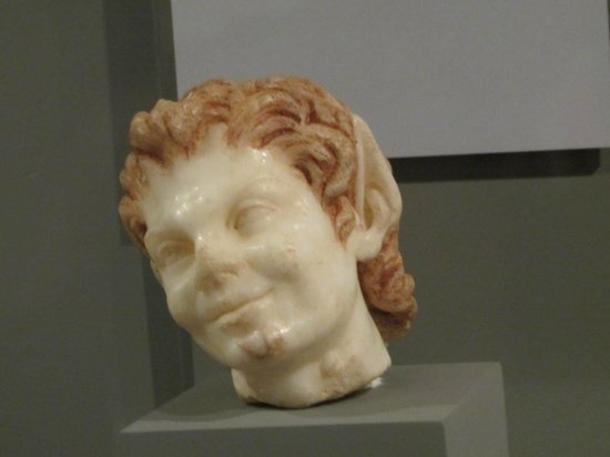 Museo de Zaragoza: ушастый хохотун