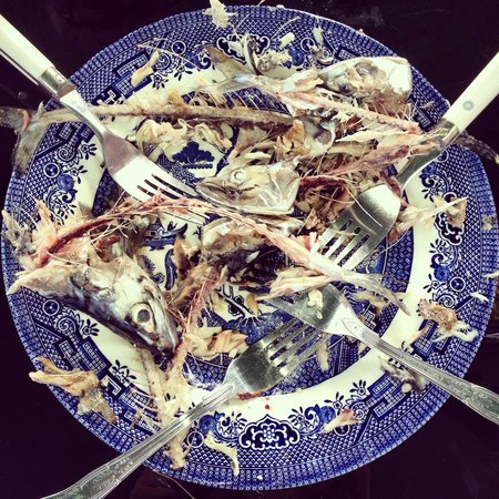 Sirius Charters: Evidence of delicious line caught mackerel.
