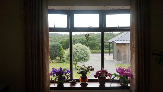 Braeside Bed & Breakfast : View from inside the living room