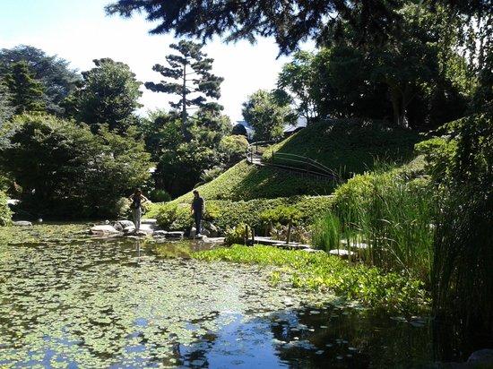 Pond picture of albert kahn musee et jardins boulogne for Jardin albert kahn
