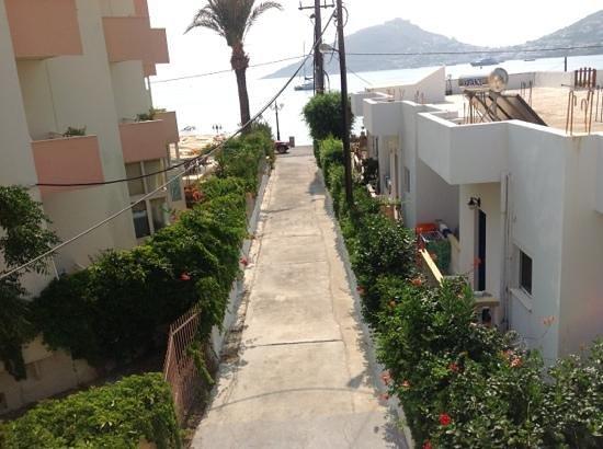 ApartHotel Papafotis: la vista dalla nostra camera