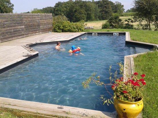 Chez Muriel et Gerard : La piscine du gite