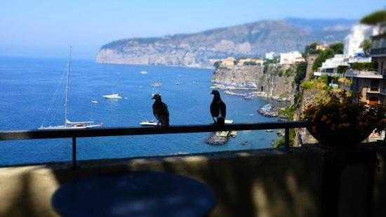 Grand Hotel Ambasciatori: Dining outside