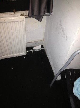 Hotel Croydon : rat trap