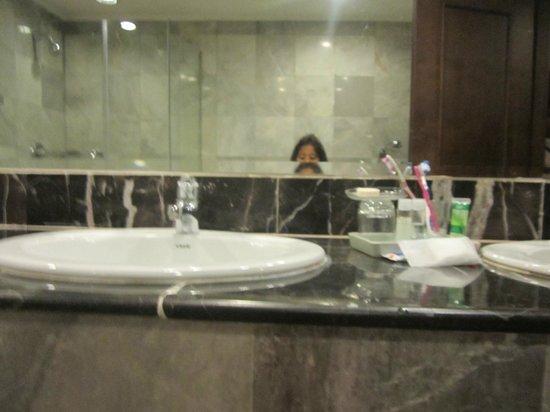 Royal President: Bathroom