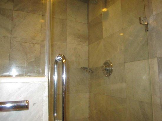 Royal President: Shower Area