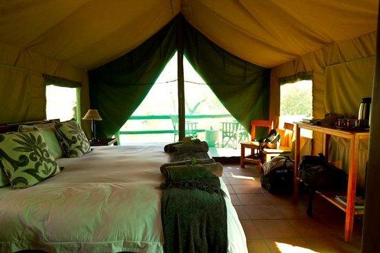 Sausage Tree Safari Camp : Notre tente