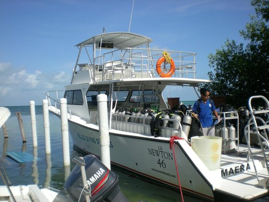 Belize Diving Services: The Maera