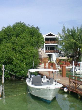 Belize Diving Services: Bye Bye