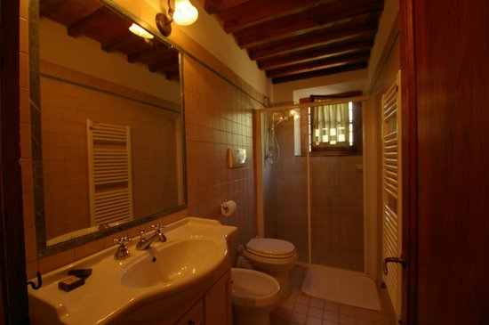 Santa Maria a Poneta: our bathroom, nice and very well clean!!!