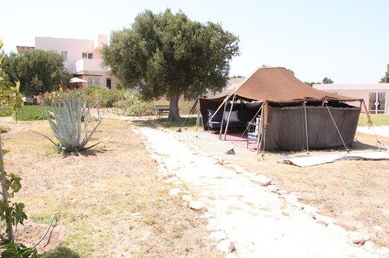 Dar Diamar: tente Berbère