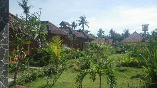 Lembongan Tropical Guest House: Un jardin apaisant