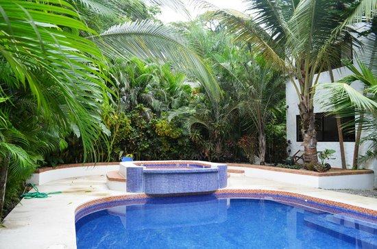 Atrapasueños Dreamcatcher Hotel: Pool