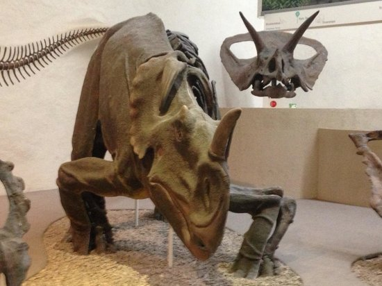 Yale Peabody Museum of Natural History: More dinosaurs