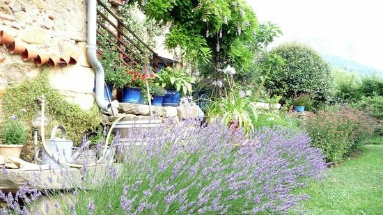 Le Presbytere : Le jardin luxuriant