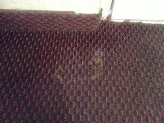 Days Inn & Suites Altamonte Springs: the carpet