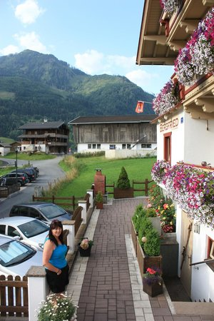Appartement Pension Bergfried: mountain side