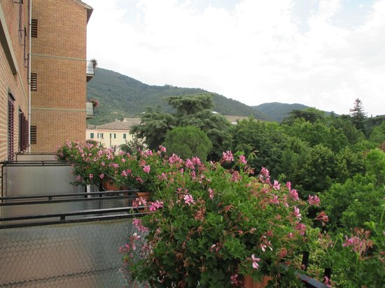 Hotel Dei Duchi: Part of the view from my balcony.