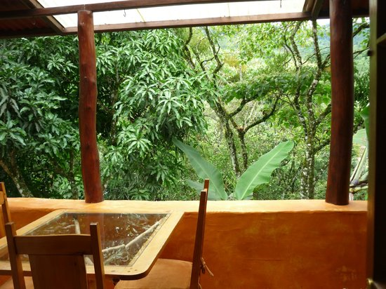 Rio Chirripo Lodge & Retreat : View from the balcony of our casita