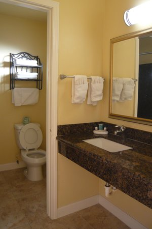 Aloha Inn: Vanity & toilet, king room