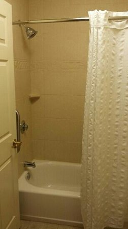 Homewood Suites by Hilton Jacksonville Deerwood Park: Bathroom