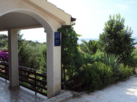 Dolac Guesthouse : Portico