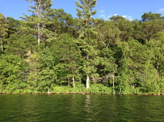Kavanaugh's Sylvan Lake Resort: Lake Sylvan was quiet and had some decent size bass
