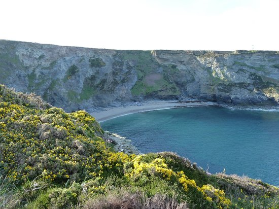 Cliff House Bed & Breakfast: Cliffs above Portreath