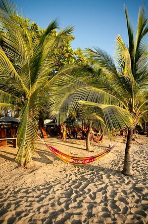 Playa Avellana: the perfect spot