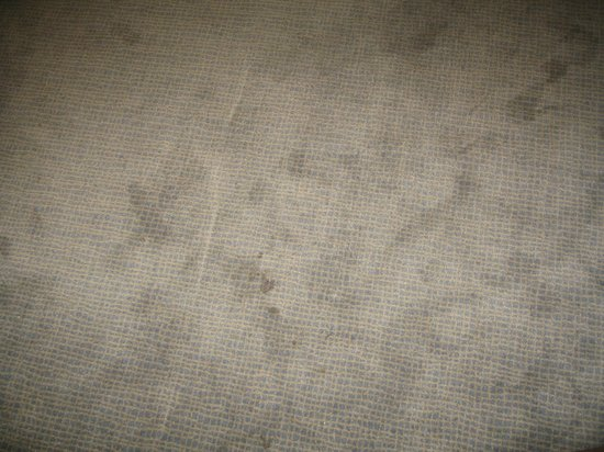 Novotel Birmingham Airport: Stained carpet