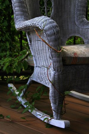 A View With A Room: Deck Rocker with Vine