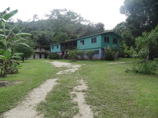 Hummingbird Guest Lodge & Hostel : the hostel