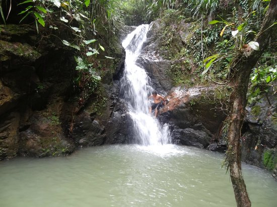 Hummingbird Guest Lodge & Hostel: the waterfall that is part of the land
