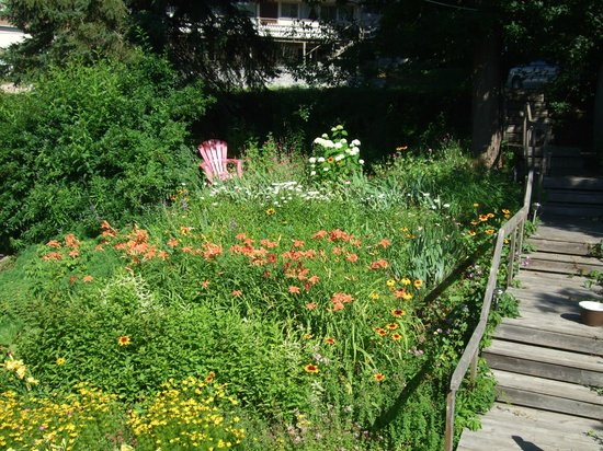 40 Bay Street Bed & Breakfast : Wonderfully wild and colorful garden