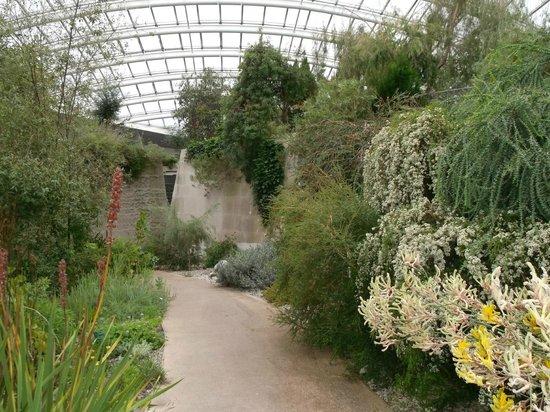 Glasshouse Picture Of National Botanic Garden Of Wales Llanarthney Tripadvisor