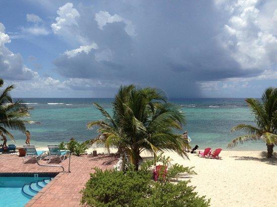 Turtle Nest Inn: the beach