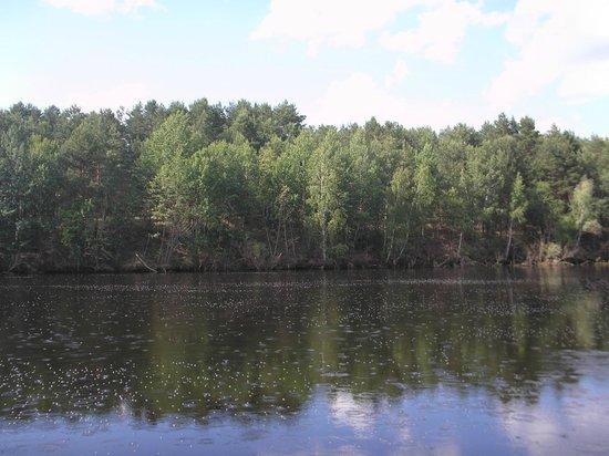 Pripyatskiy National Park: Припять